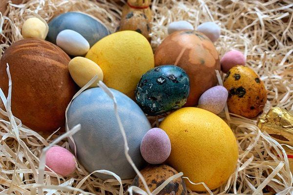 Máte radi vajíčka? Tu je pár faktov ako ich uvariť